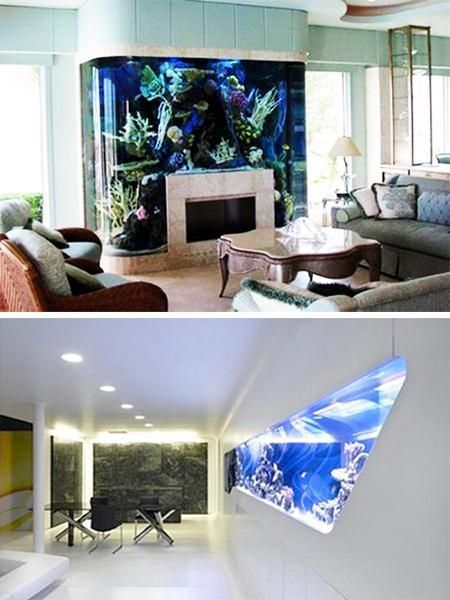 Glass fish tanks tropical fish and tropical on pinterest for Aquarium interior decoration