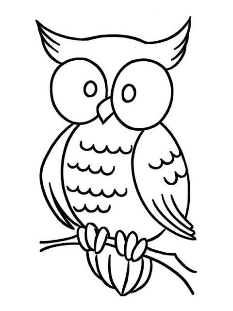 Joyghosh18 I Will Do Amazing Coloring Book Pages Illustration For Kids For 5 On Fiverr Com In 2021 Owl Coloring Pages Cartoon Coloring Pages Owl Drawing Simple