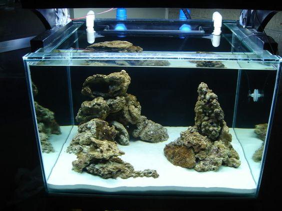 How to aquascape small aquarium - Reef Central Online Community