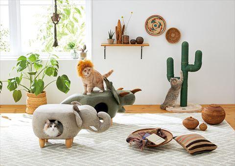 トリケラトプス型の猫ベッドやサボテン爪とぎポールがかわいい サファリモチーフの猫グッズ登場 ねとらぼ 猫 トリケラトプス ねこ