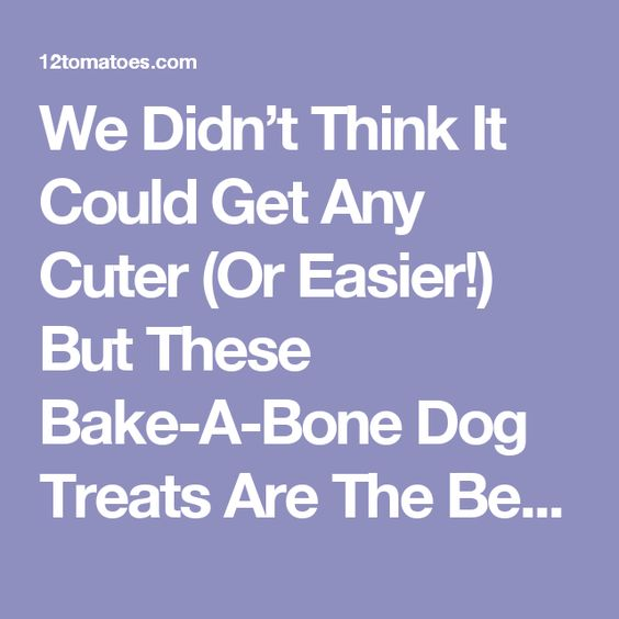 We Didn't Think It Could Get Any Cuter (Or Easier!) But These Bake-A-Bone Dog Treats Are The Best!!! – 12 Tomatoes