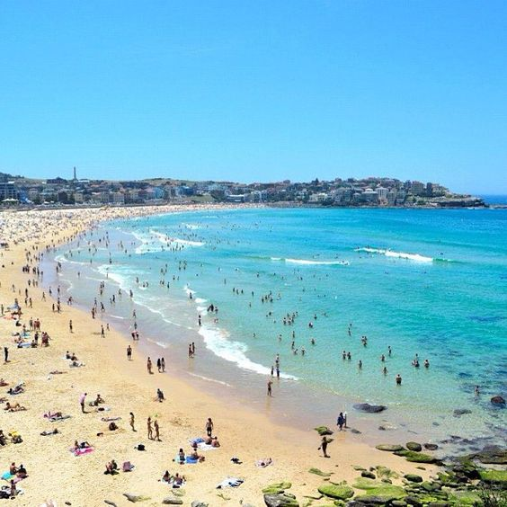 There's nothing like Summer at Bondi Beach! #Sydney #Australia