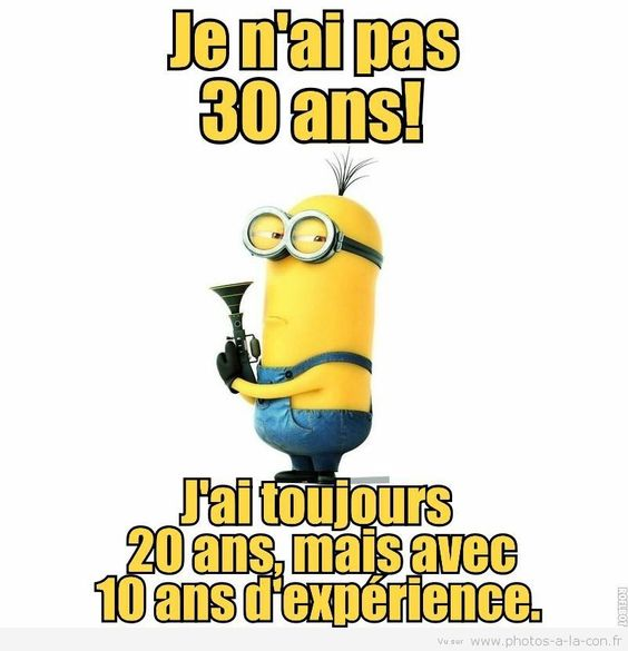 Chats Images Drôles — Mignon Images De Animaux De Compagnie