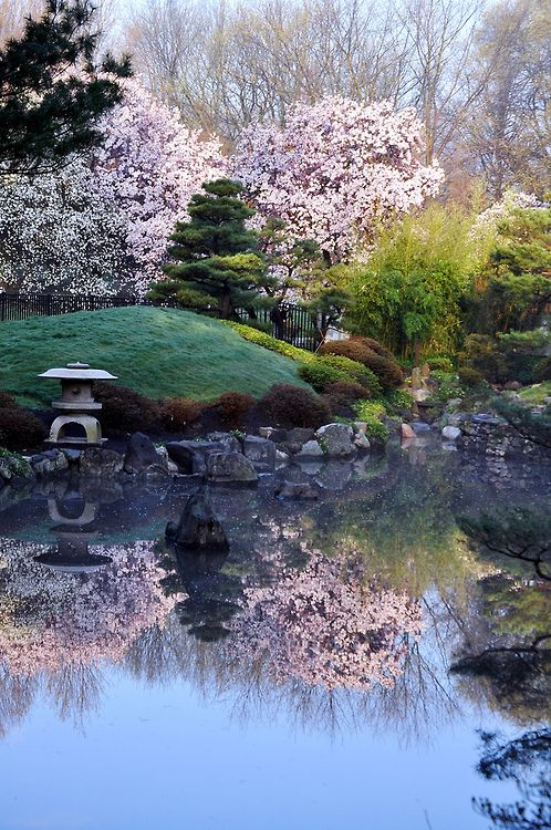 Japanese Gardens, Philadelphia And Gardens On Pinterest