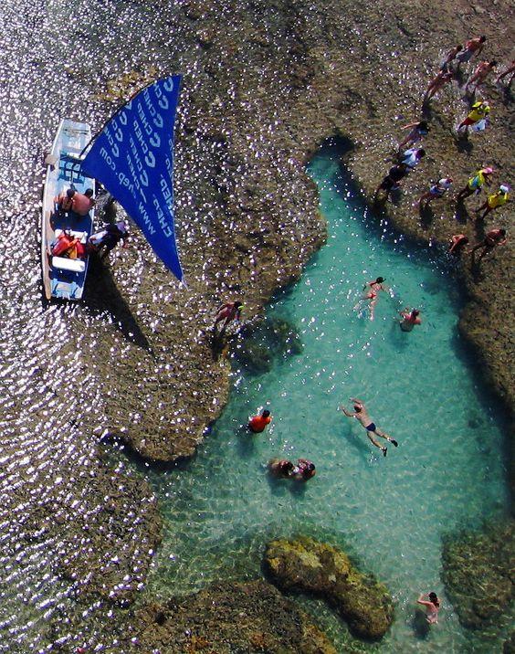 Swim in the natural pools of Porto de Galinhas, Brazil.: