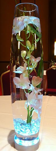 Submerged orchids uplit in blue flowers for the venue