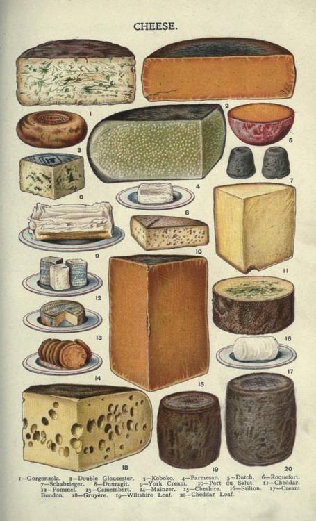 cheese | Tumblr