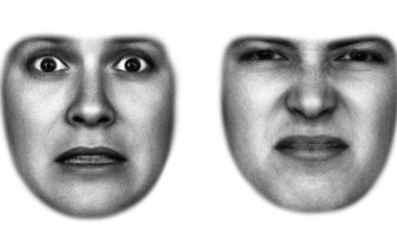 Expressões faciais são guiadas pelas emoções, afirma especialista | #Emoções, #ExpressãoFacial, #Foco, #Medo, #MelissaOsgood, #Olhos, #PercepçãoVisual, #UniversidadeDeCornell, #Visão