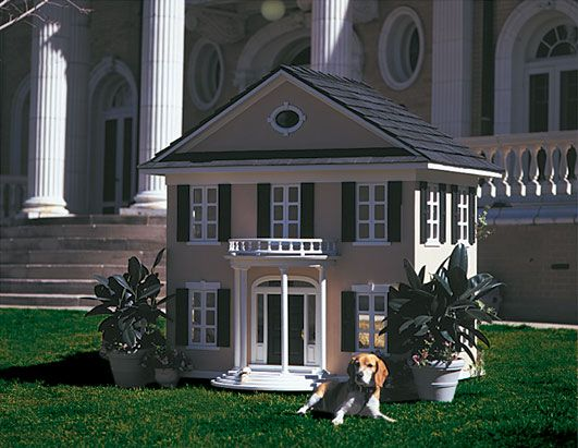 Mansion and mini mansion (and dog!)