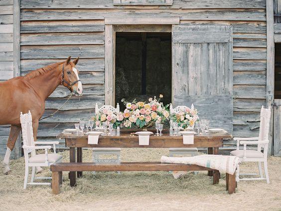 a horse farm wedding charleston amp hilton head island