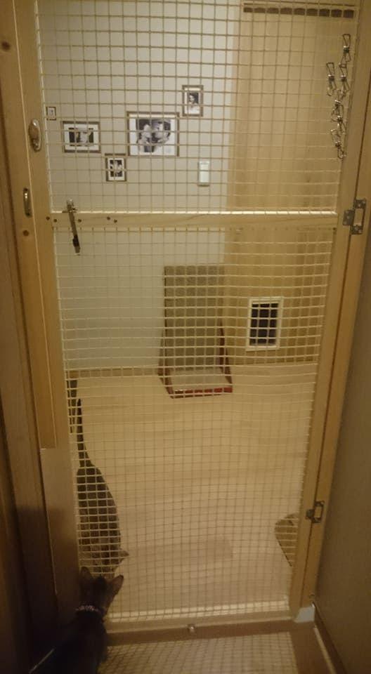 Kanecomimi 玄関の猫脱走防止ドア 2号機完成 エコ引き戸 Diy 引き戸 Diy 引き戸 扉 Diy