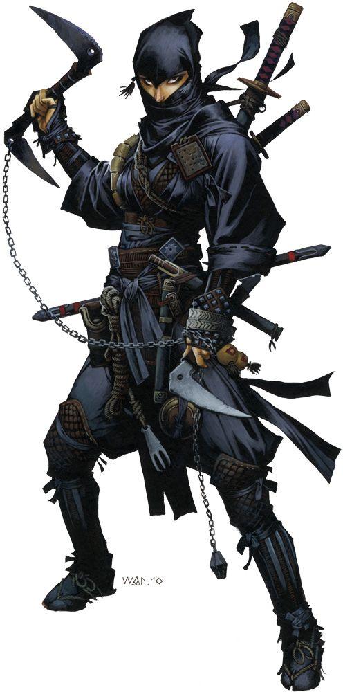 Ninja by Wayne Reynolds