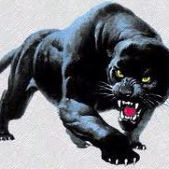 Could be a dope tat animals nature pinterest for Carolina panthers tattoos