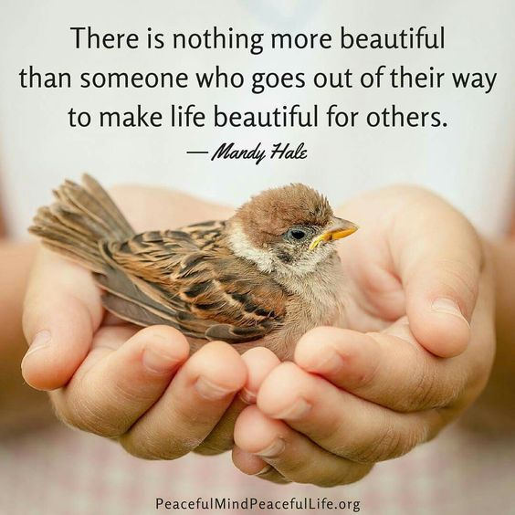 Those who make life beautiful for others ༺♡༻