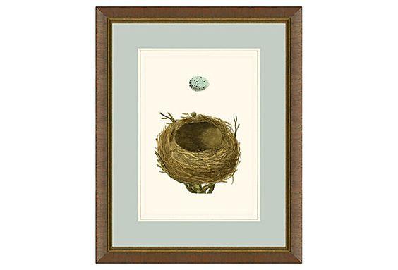 Egg and Nest Print on OneKingsLane.com