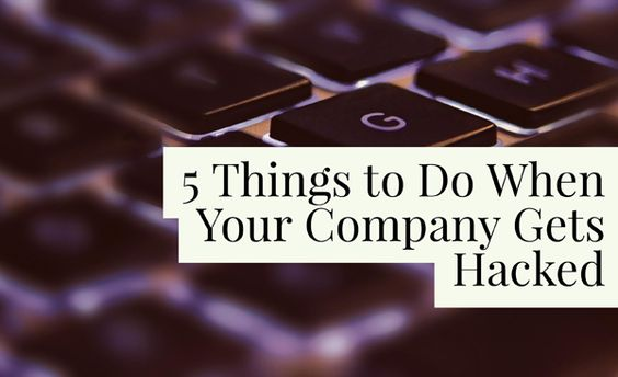 5 Things to Do When Your Company Gets Hacked - 'Net Features - Website Magazine