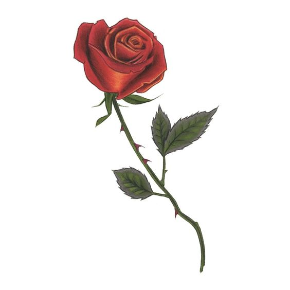 Red Rose #Art #Bridal #Colorful
