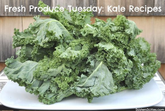 Too much kale in your CSA?  Here are 20 recipes for kale!       #csa #farmersmarket #summerproduce #kale