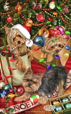 --Yorkshire Terrier - Tree Trimmers
