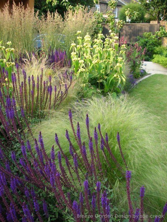 Sue Creak Phlomis Stipa Salvia Garten Entwurf In 2020 Garten Bepflanzen Gartenteich Bepflanzen Bepflanzung
