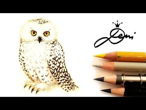 Schnee Eule Hedwig Zeichnen Vogel Malen How To Draw A Snowy Owl Kak Se Risuva Byala Sova Heduig Youtube Eule Malen Eulen Zeichnen Vogel Zeichnen