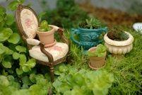 miniature gardens / fairy gardens