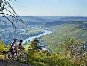 Mountainbike-Tour Mosel-Region @Moselholidays