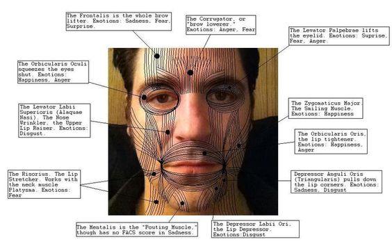 facial body language jpg 1500x1000