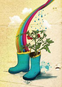 rainbow tomato boots