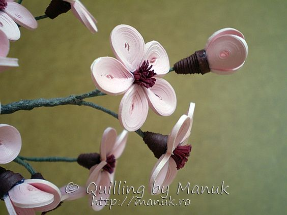 Quilled cherry blossom