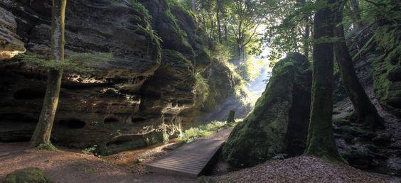 Das Aesbachtal auf dem Felsenweg1 des Naturwanderpark delux zwischen Echternach…