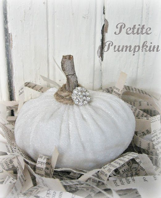 White Velvet Pumpkin from Junk to Joy!: