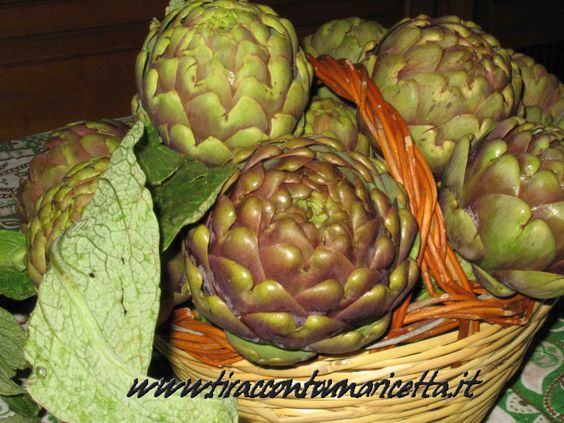 Carcioffole (carciofi) alla matticella: Carciofi interi cotti nelle braci di tralci di vite - artichokes cooked in the embers of vine shoots