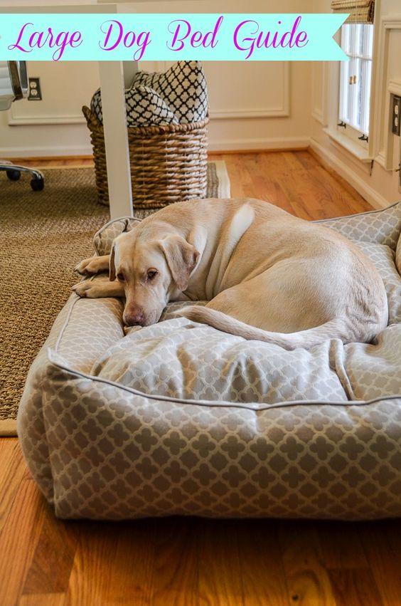 Boxer Dog Crib Bedding