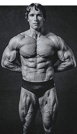 Arnold schwarzenegger, Bodybuilding and Trainers on Pinterest  Arnold Schwarzenegger