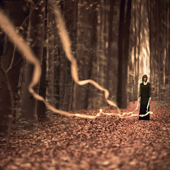 孤獨, ... 很美...
