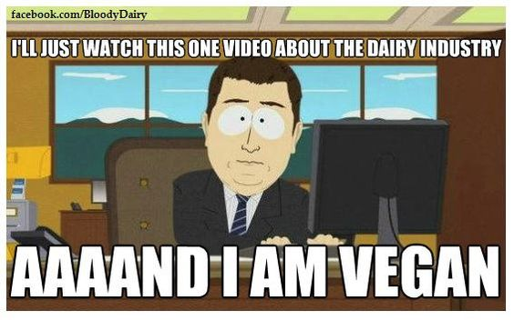 that's how it happens.. seriously, watch Earthlings because anyone I know who has seen it, has gone vegan immediately afterward,: