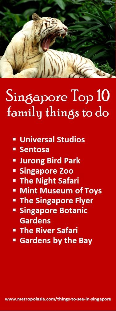 "Explore Singapore's top 10 family things to do | Visit ""Things to do in Singapore"". I did most when visiting there with the Navy."