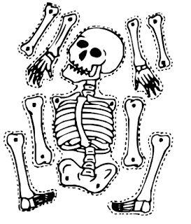 Ideas Y Material Para Fiestas Y Candy Bar Calaveritas Para Colorear Esqueleto Para Armar Calaveras Para Colorear Dibujo Del Esqueleto Humano