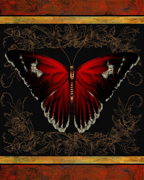 I uploaded new artwork to fineartamerica.com! - 'Butterfly Treasure-Shirley' - http://fineartamerica.com/featured/butterfly-treasure-shirley-jean-plout.html via @fineartamerica