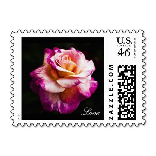 Large Pink Rose with Touch of Purple Stamps A Postage Stamp