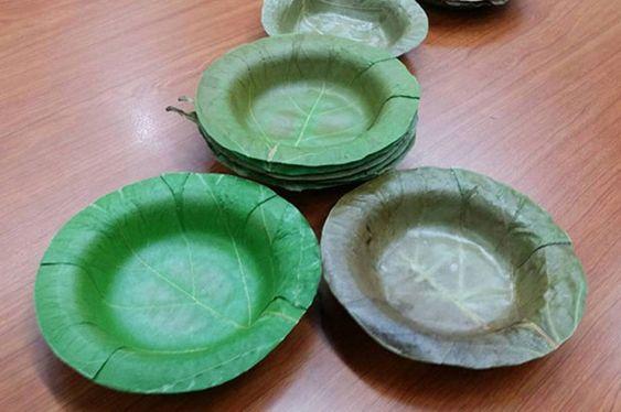 Tailandesas criam pratos descartáveis feitos de folhas - Pensamento Verde