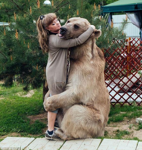 Na Rússia, um casal adoptou um urso de três meses e nunca conseguiu libertá-lo. Agora, ele é um verdadeiro filho.