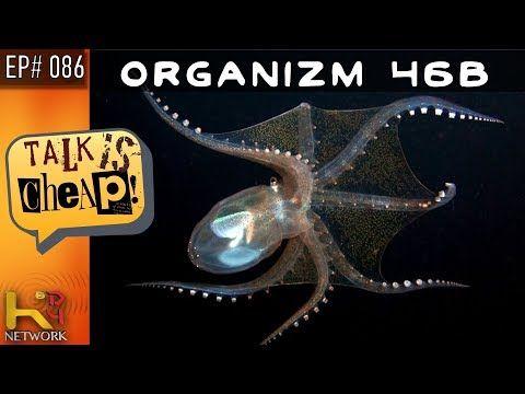 Talk Is Cheap Ep086 Organism 46b Youtube Organs Talk Lake Vostok