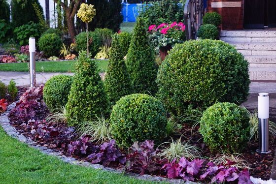 Rabata Przed Wejsciem Do Domu Ma Zdobic Caly Rok Outdoor Plants Urban Garden Indoor Outdoor Plants