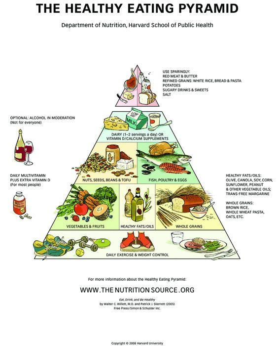 Harvard's food pyramid is based on exercise.