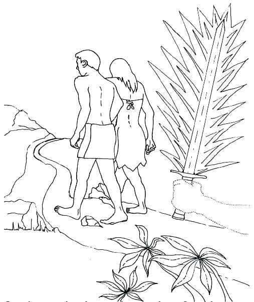 Image Result For Adam And Eve Disobey God Coloring Page Adan Y