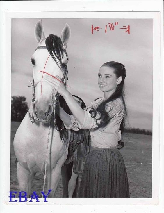 Audrey Hepburn w/horse  VINTAGE Photo The Unforgiven