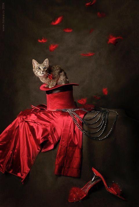 Epingle Par Amy Harmeier Sur Brown Red Photographie Rouge Nuances De Rouge