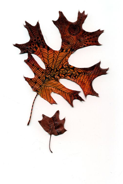 Love this on a leaf!
